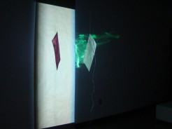 Salt, Water & Light, 2013