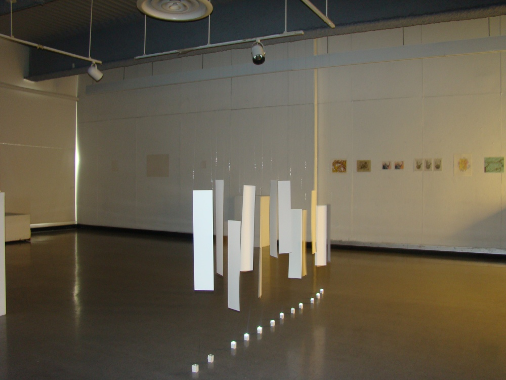 Sun & Salt, 2014 Multi-media Installation Dimensions vary Collection of the Artist