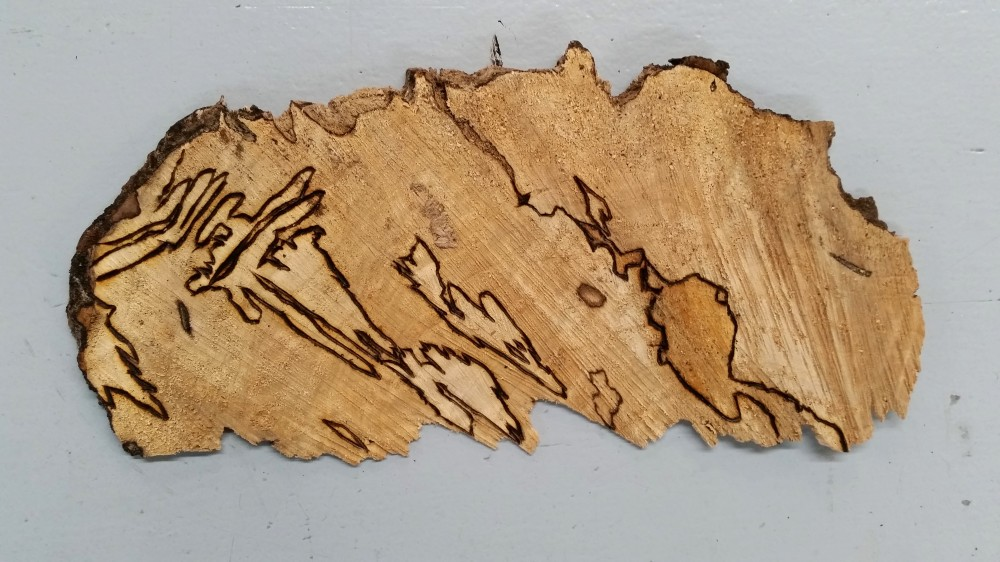 "Impermanence 5.25""h x 11""h Burnt Wood"